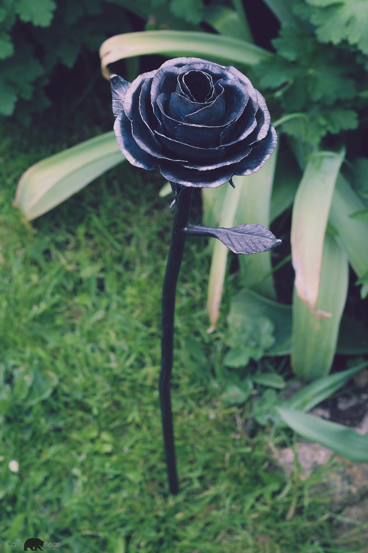 Rose above.jpg