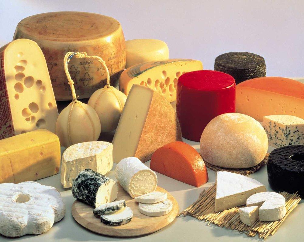 cheesemaking.jpg