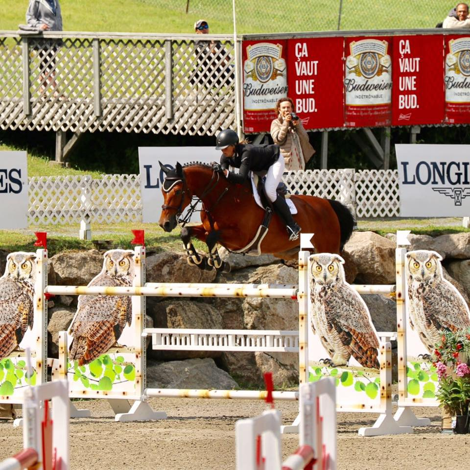 Sarah and Dontez showing in Bromont, QC