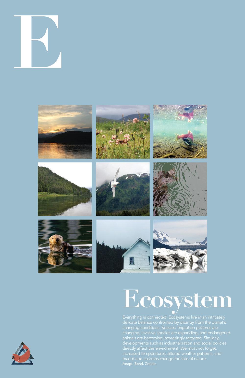 ecosystem_final copy.jpg