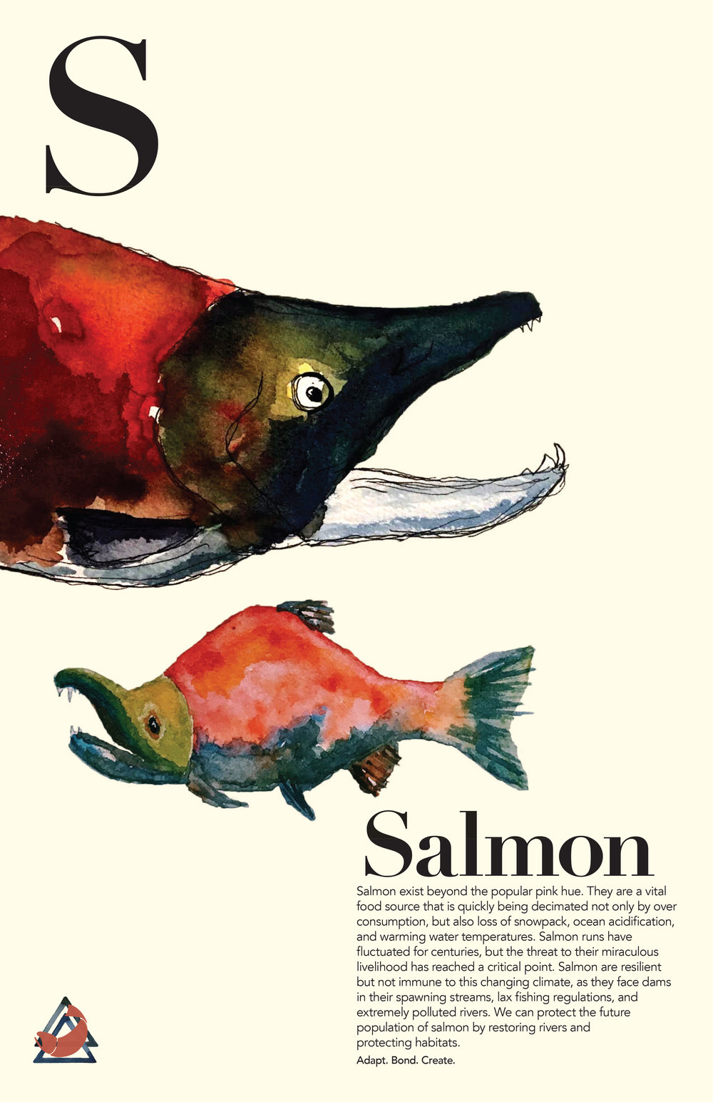 Salmon_final copy.jpg