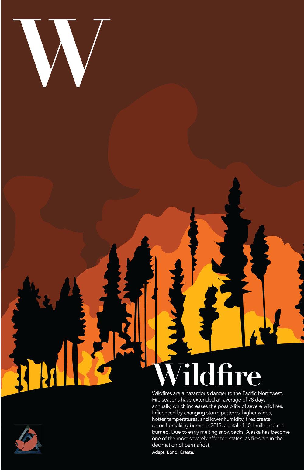 wildfire_final copy.jpg