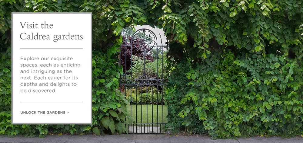 GardenLayout2.jpg