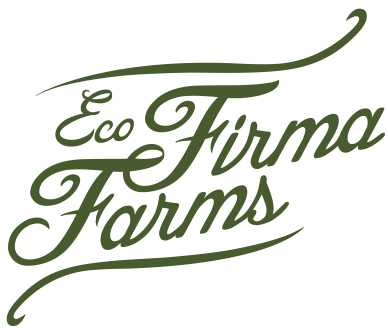 EcoFirma_2ndMark_noIcon_CMYK.png