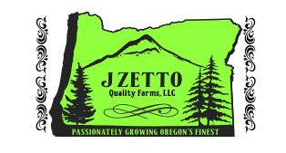 JZetto Logo with color.png