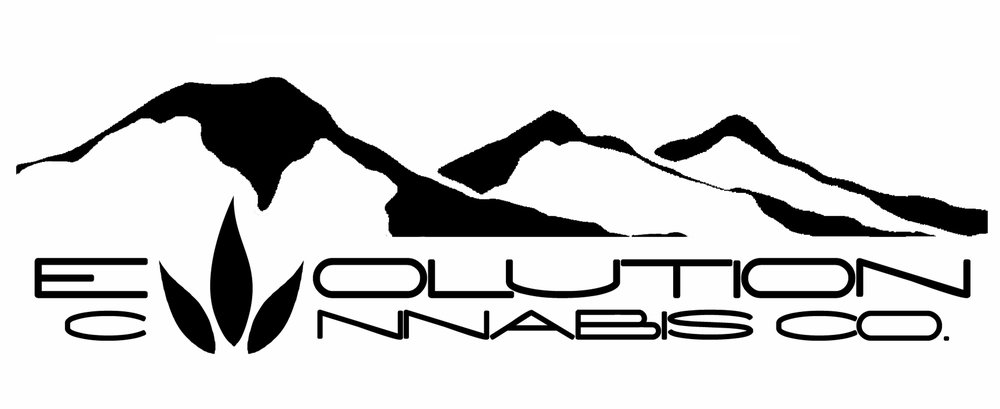 Evolution Logo 5.jpg