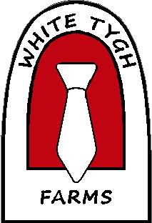 White Tygh Logo NEW Final 1.jpg