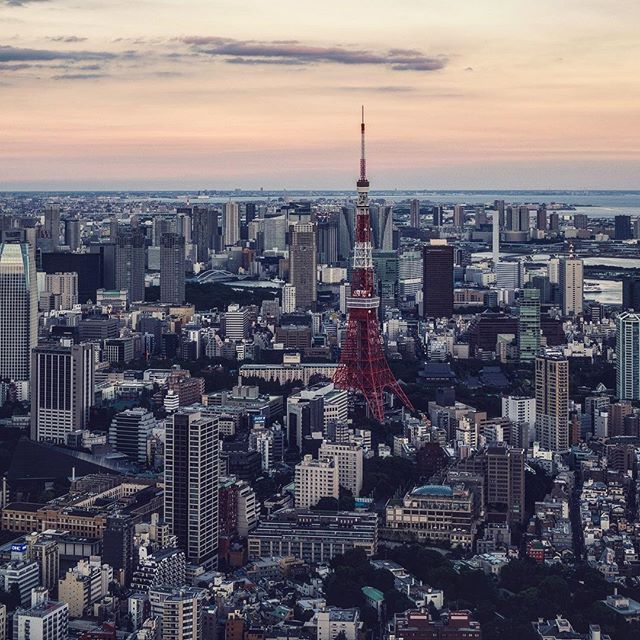 Tokyo Tower, the second highest structure in the city. Go Forth on the Never Ending Path. #ransomholdingco
