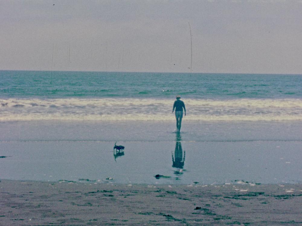 Ocean+w+dog.png