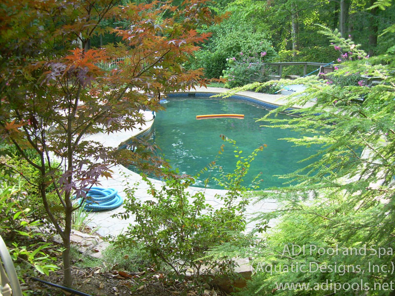 natural-swimming-pool-with-stamped-concrete-deck.jpg