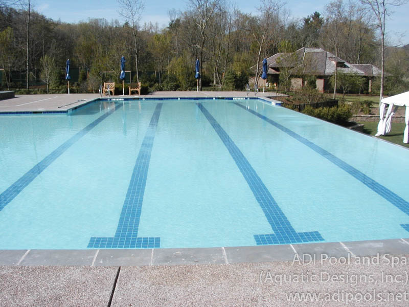 commercial-pool-with-lap-lanes-and-vanishing-edge.jpg