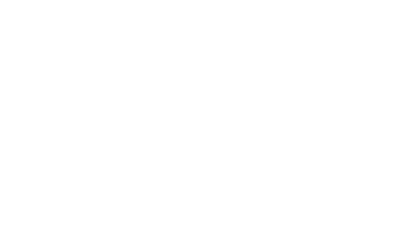 The Bayonettes