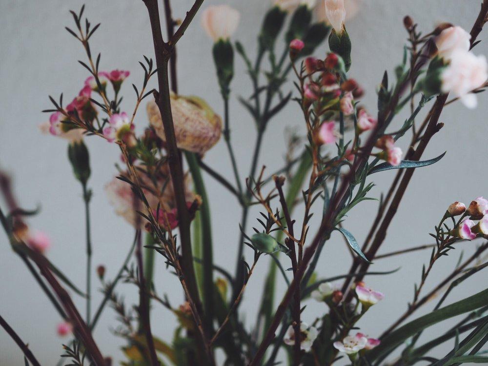 Ranunkel Blume 2000
