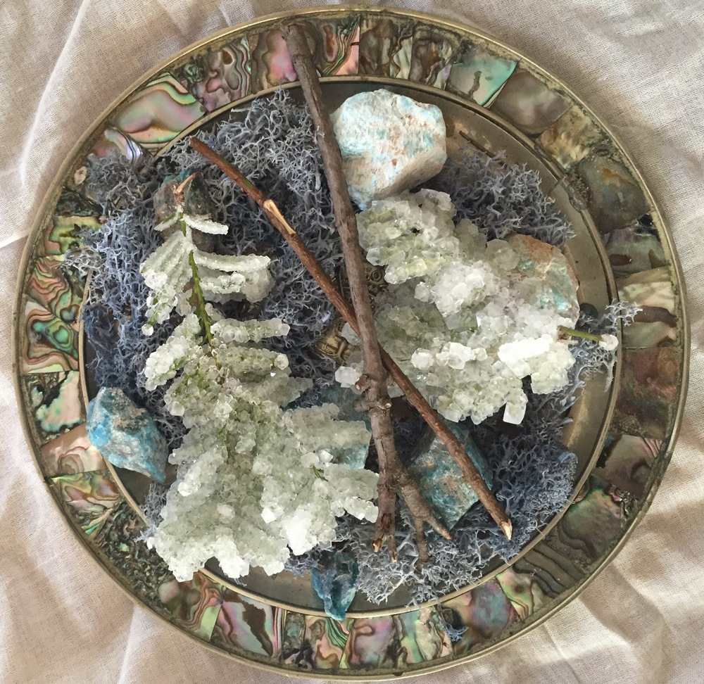Elsie's Plate, 2016  Moss, metal, pearl, foliage, blue apatite, borax     7 3/4 x1 3/4inches