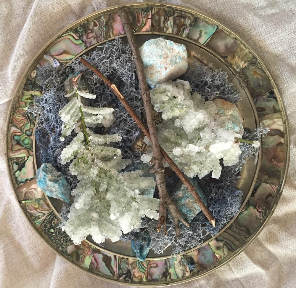 Elsie's Plate, 2016  Moss, metal, pearl, foliage, blue apatite, borax     7 3/4 x1 3/4inches