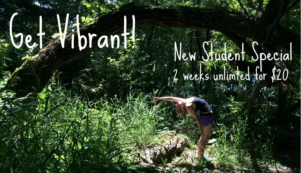 New Student Discount membership Special: $20 for 2 weeks unlimited