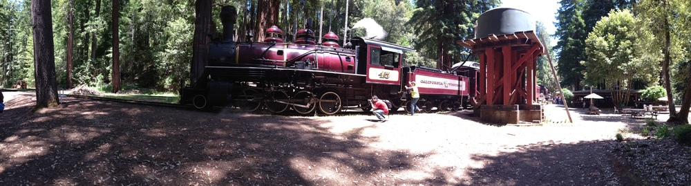 Day3_skunk train 2.jpg