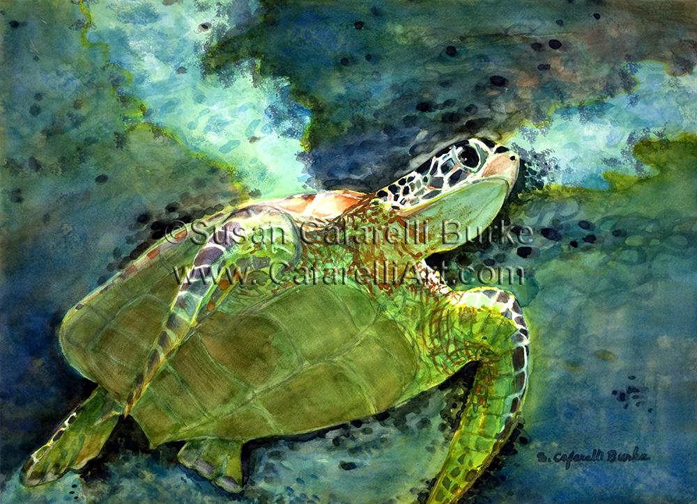 Western Turtle Clan