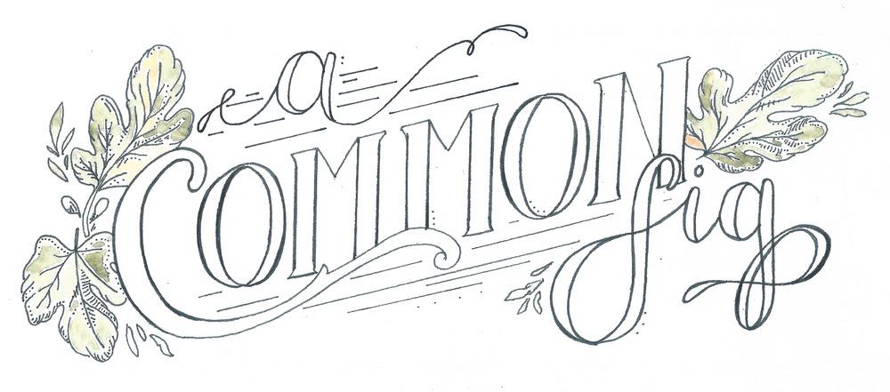 acommonfig-0005.jpg