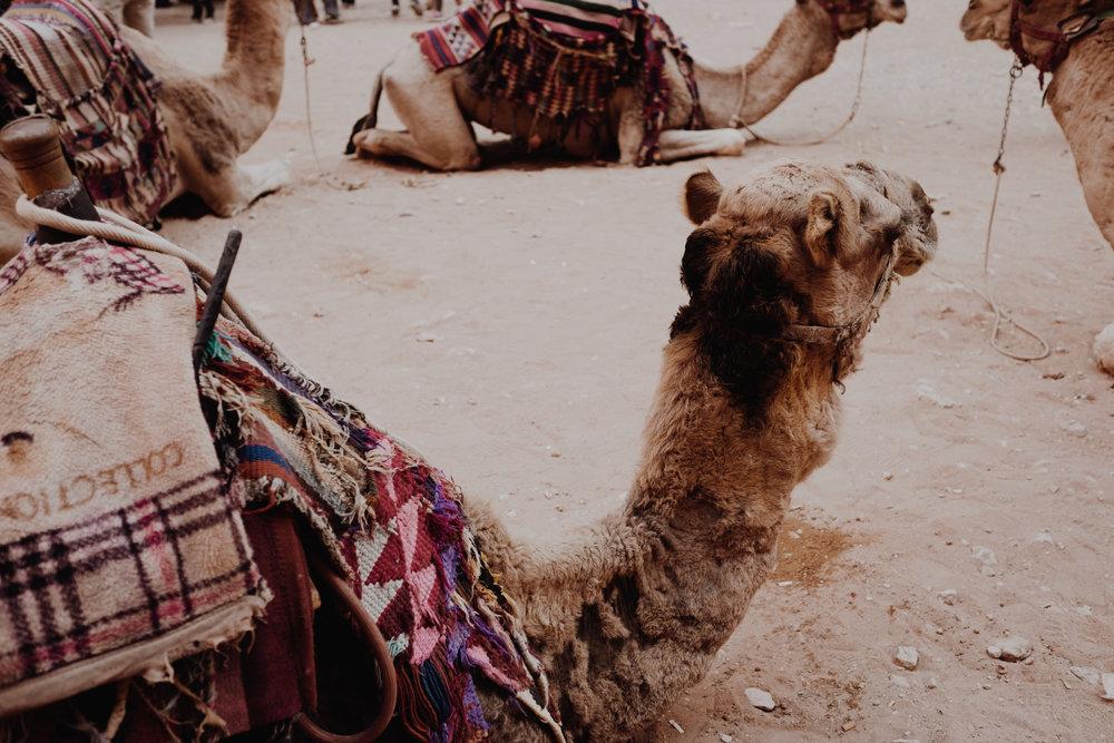 jordanedits-5101.jpg