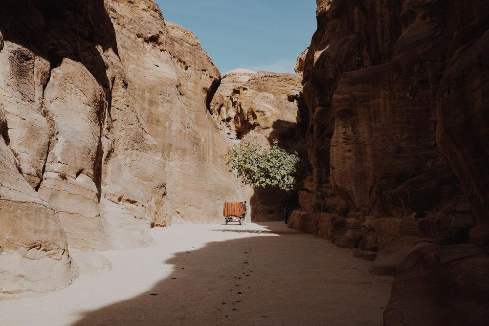 jordanedits-5048.jpg