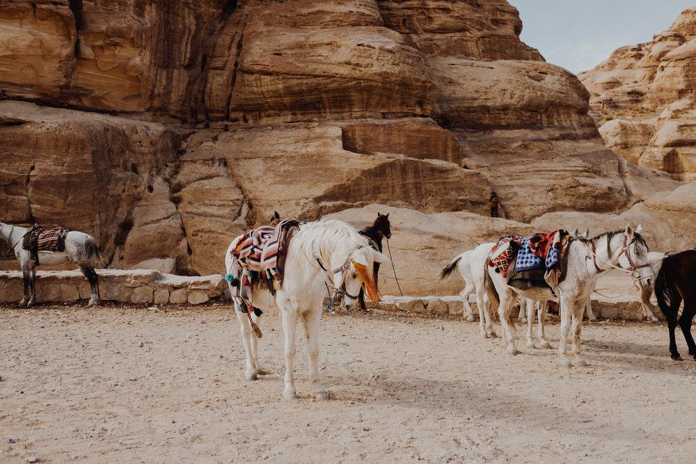 jordanedits-5028.jpg