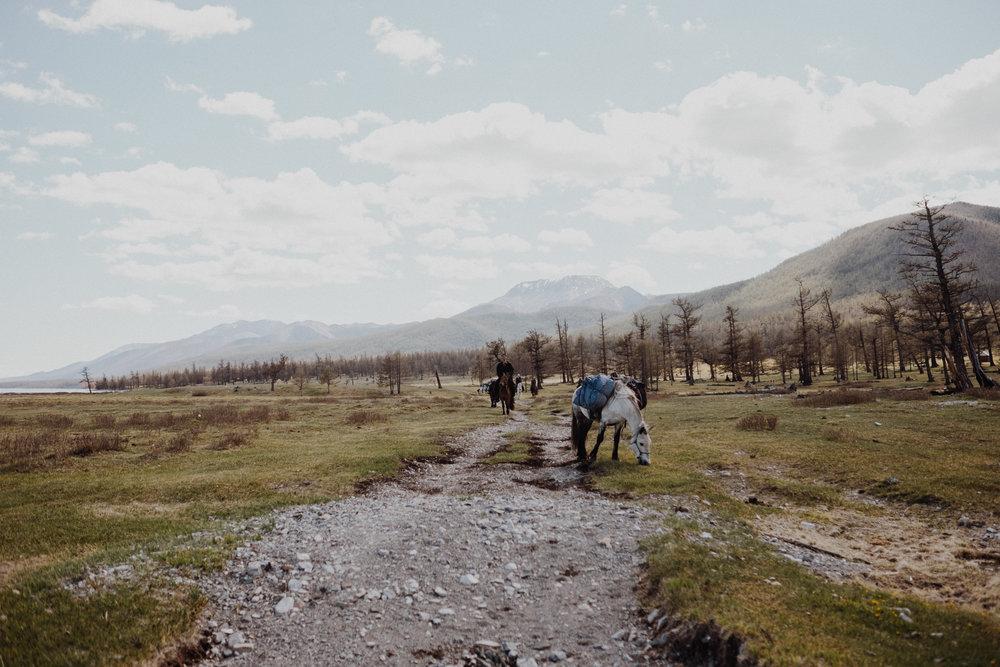 MongoliaTrek2018-8047.jpg