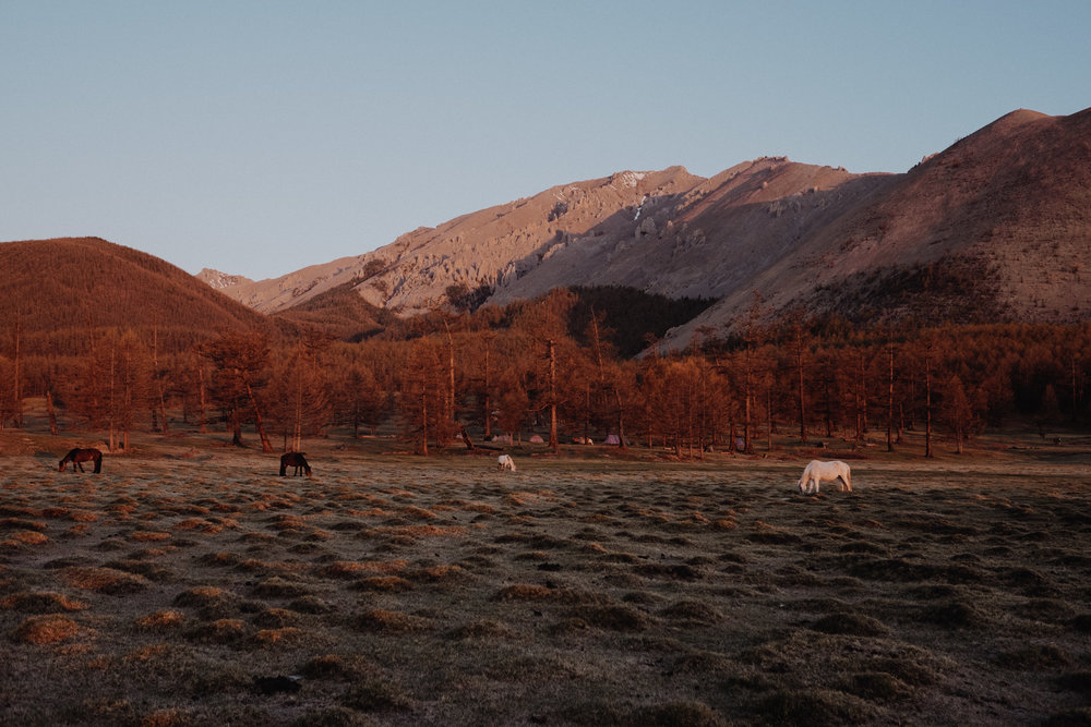 MongoliaTrek2018-8113.jpg