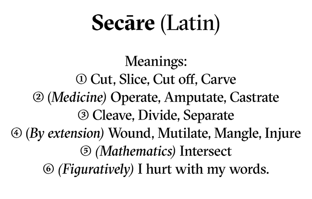 Sectra-2.png