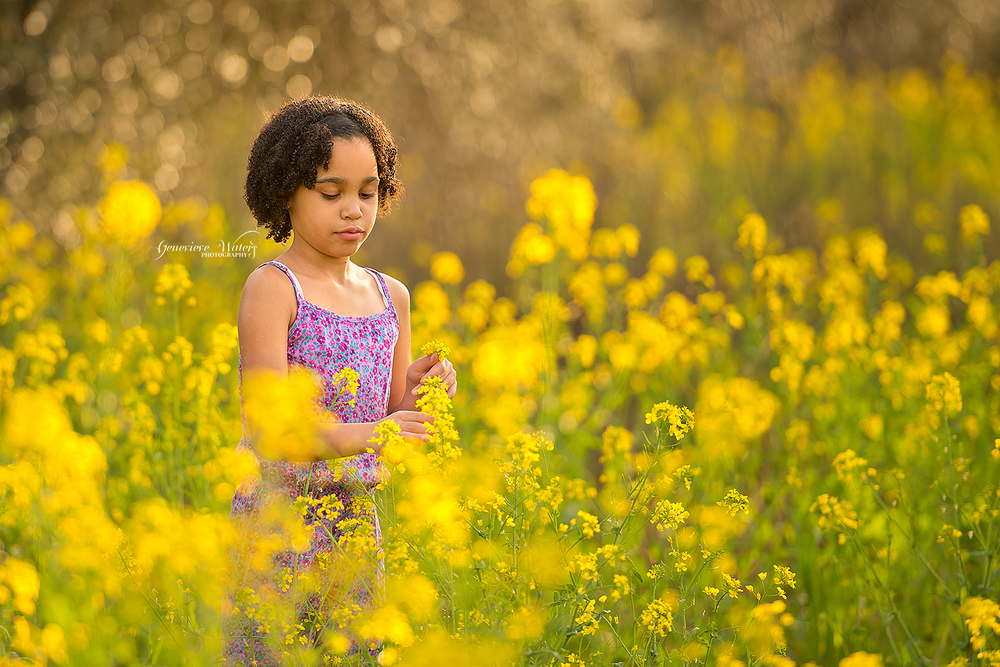 Spring Children's Photography | Wildflower pictures