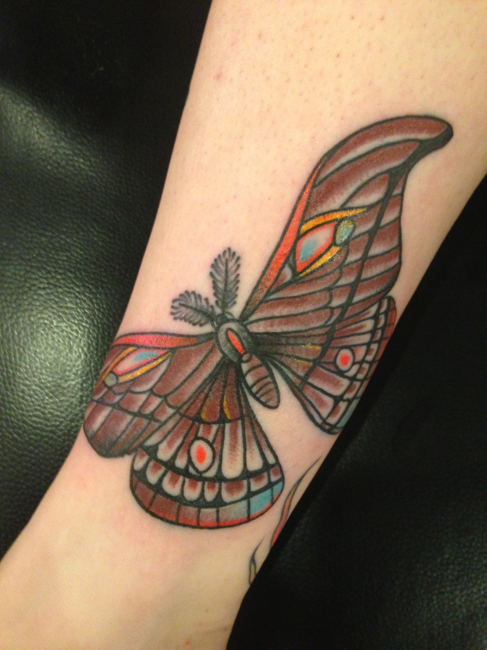 butterfly-tattoo-matt-lucci-tattoo.JPG