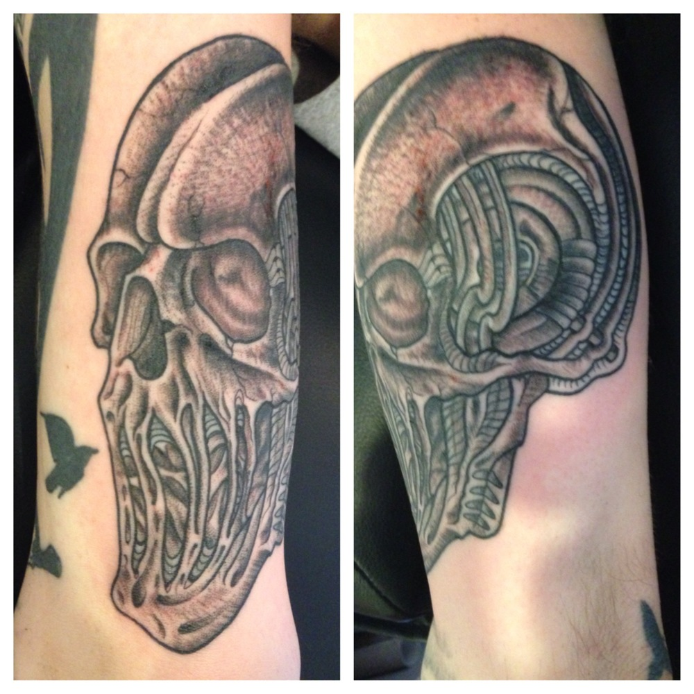 matt-lucci-tattoo-skull-black-and-white.JPG