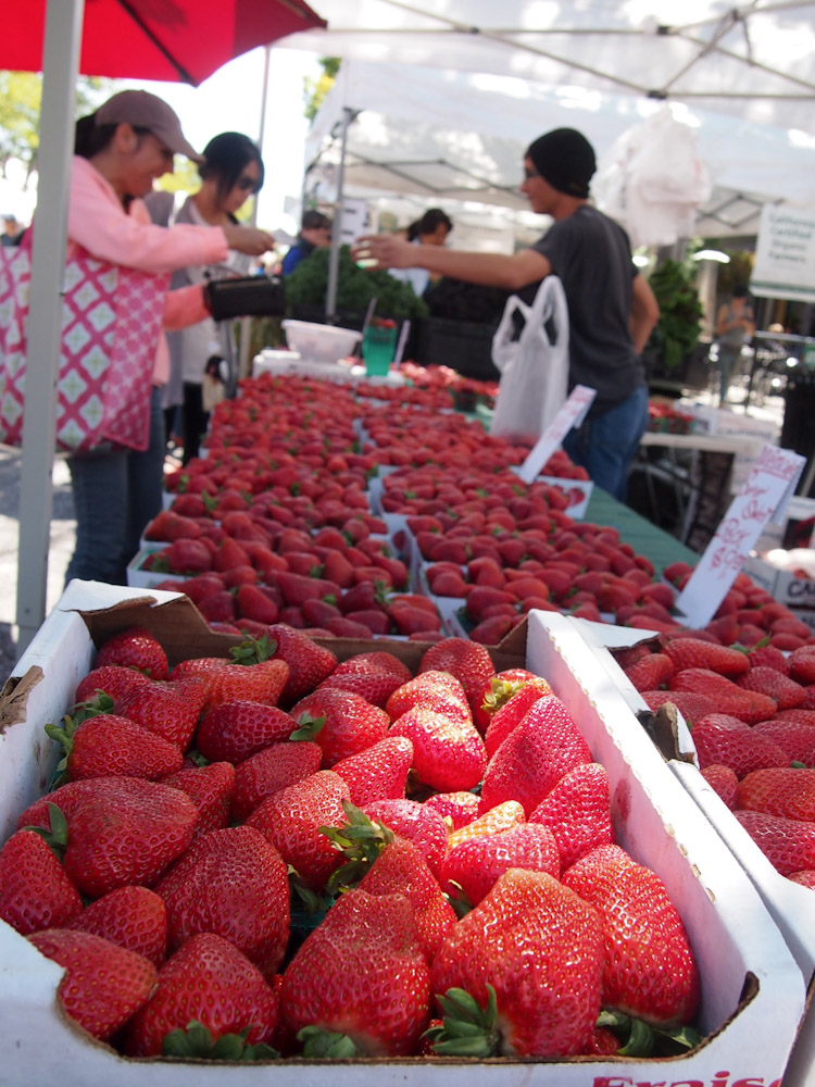 strawberry season at a farmers market in the san francisco bay area