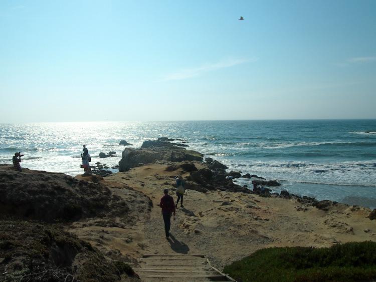 Pescadero Beach, California | vermilionroots.com