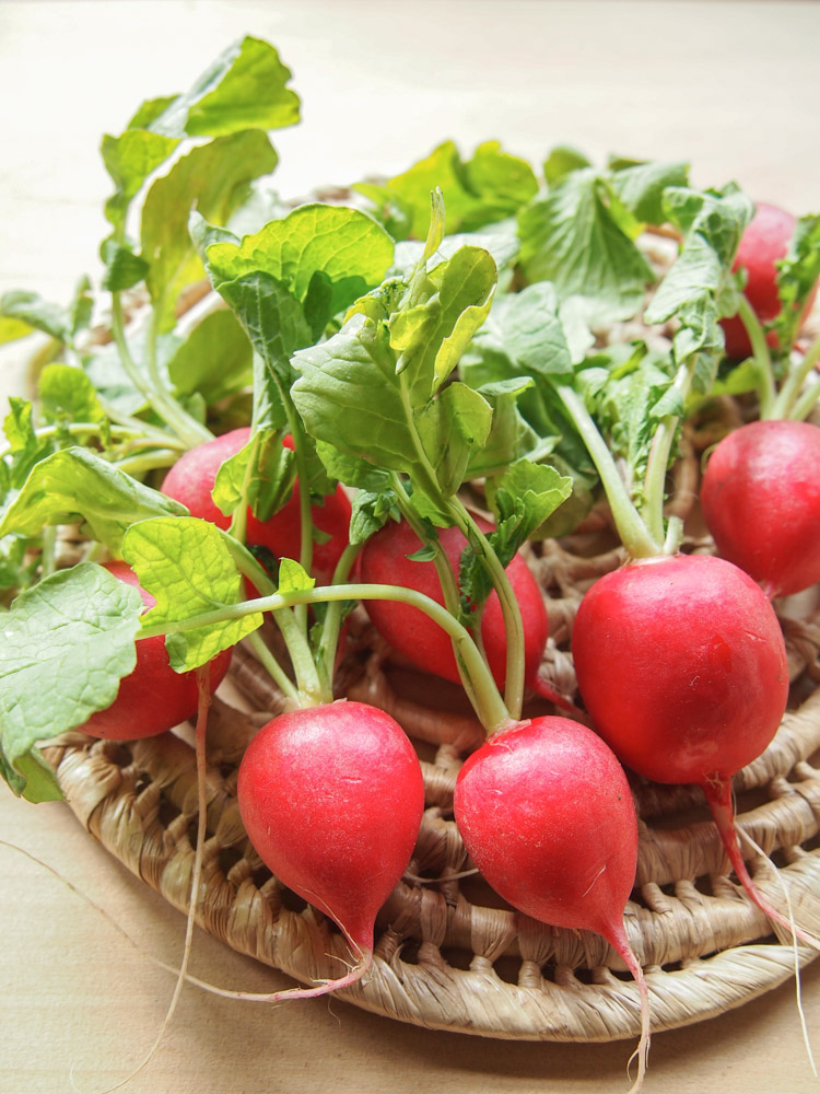 Spring Discovery: How to Cook the Season's Best on VermilionRoots.com. Featured vegetable of the week: radish.