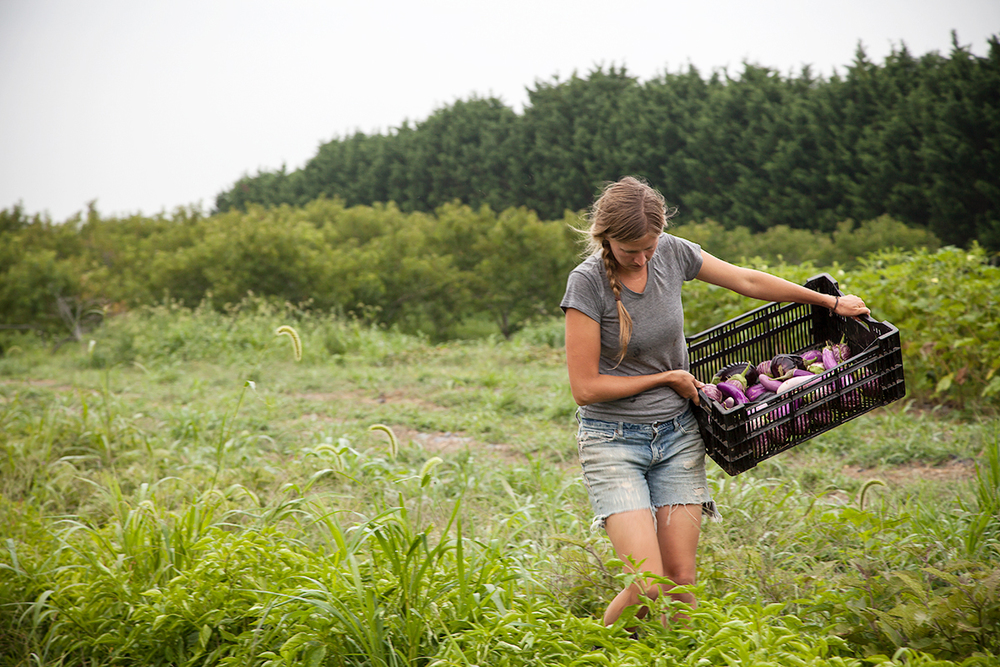 Farmer Mo Motoux of Moutoux Orchard photographed by Lise Metzger for Grounded Women