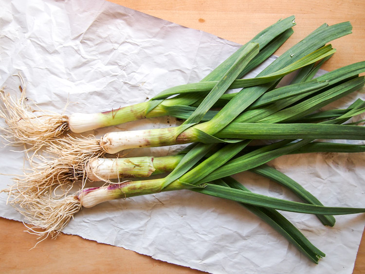 Spring Discovery: How to Cook the Season's Best on VermilionRoots.com. Featured vegetable of the week: green garlic.