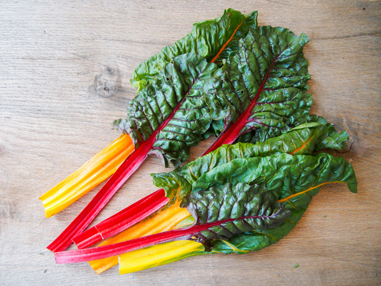 Spring Discovery: How to Cook the Season's Best on VermilionRoots.com. Featured vegetable of the week: swss chard.