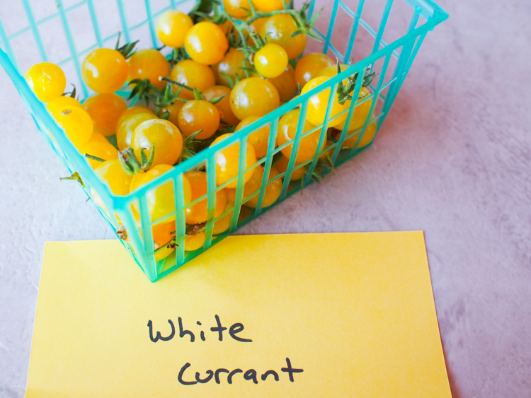 white-currant.jpg