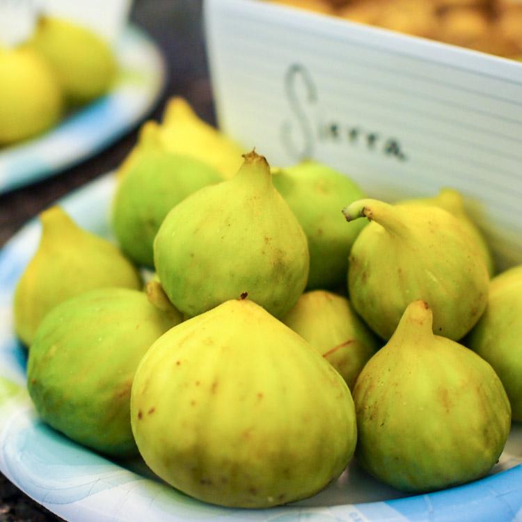 1s-sierra-figs.jpg