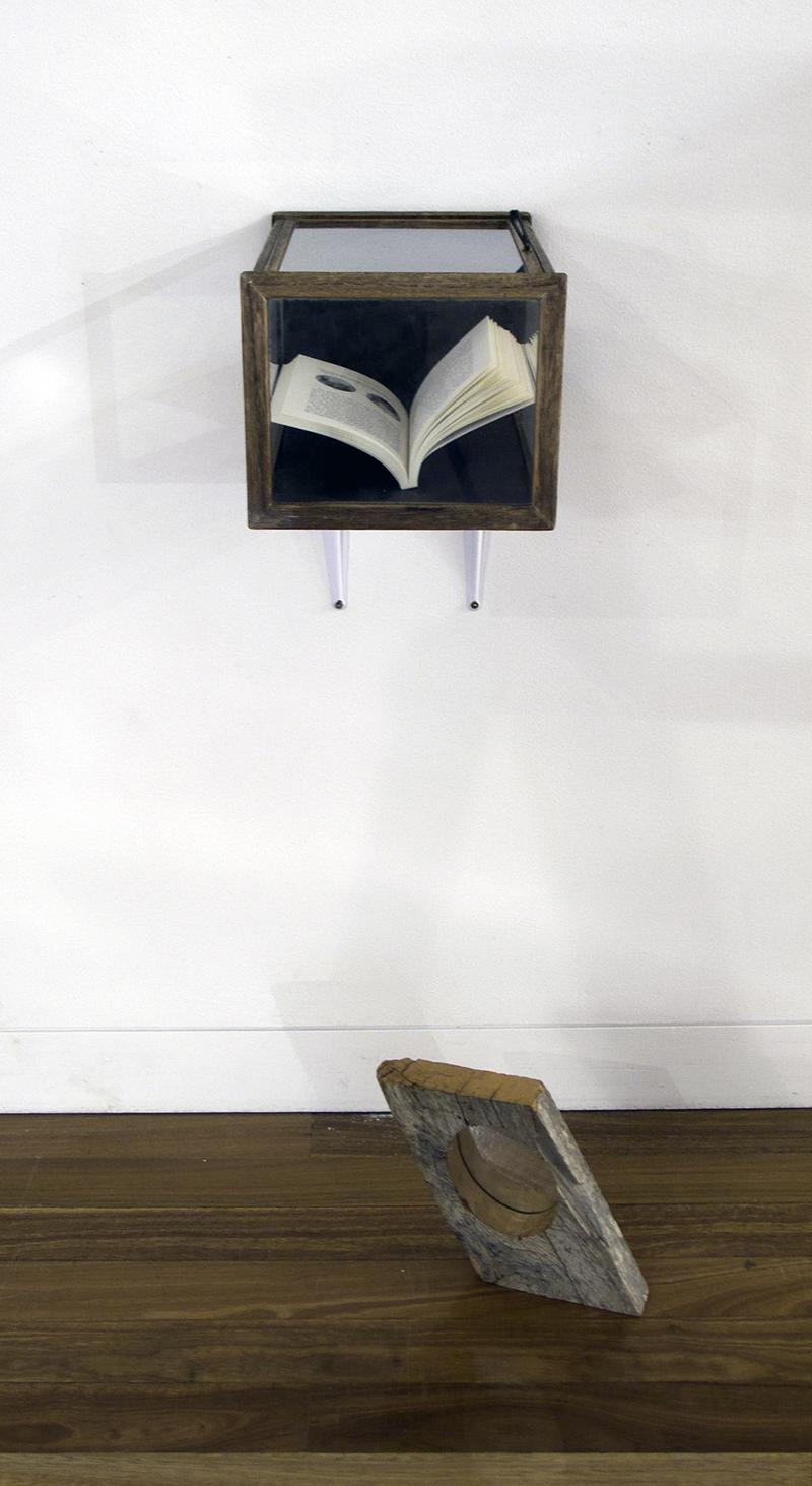 Mikala Dwyer, Moon Garden, 2008, Aratoi Museum, Masterton, New Zealand