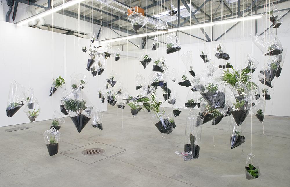 Mikala Dwyer - Black Sun Blue Moon, 2007, Hamish Morrison Galerie, Berlin