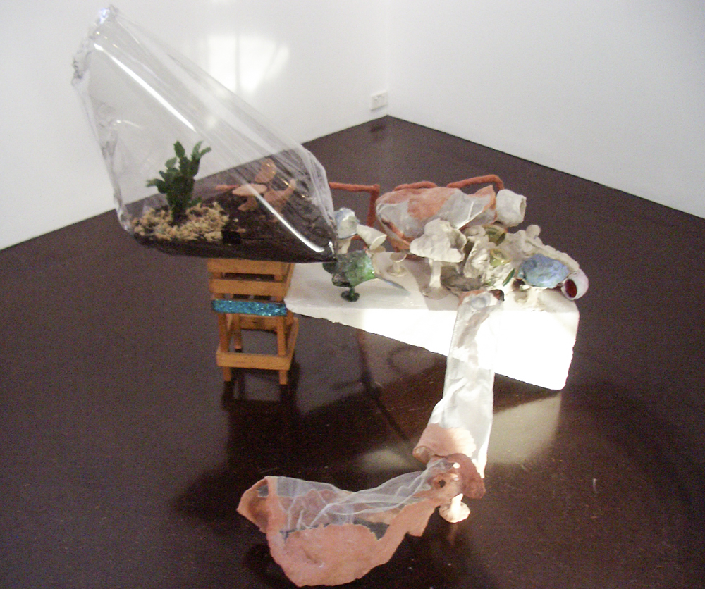 Mikala Dwyer - Only One and a Bit Days to Go, 2005, Darren Knight Gallery, Sydney