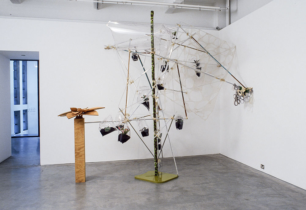 Mikala Dwyer - Flowers, Flies and Someone Else, 2004, Anna Schwartz Gallery, Melbourne