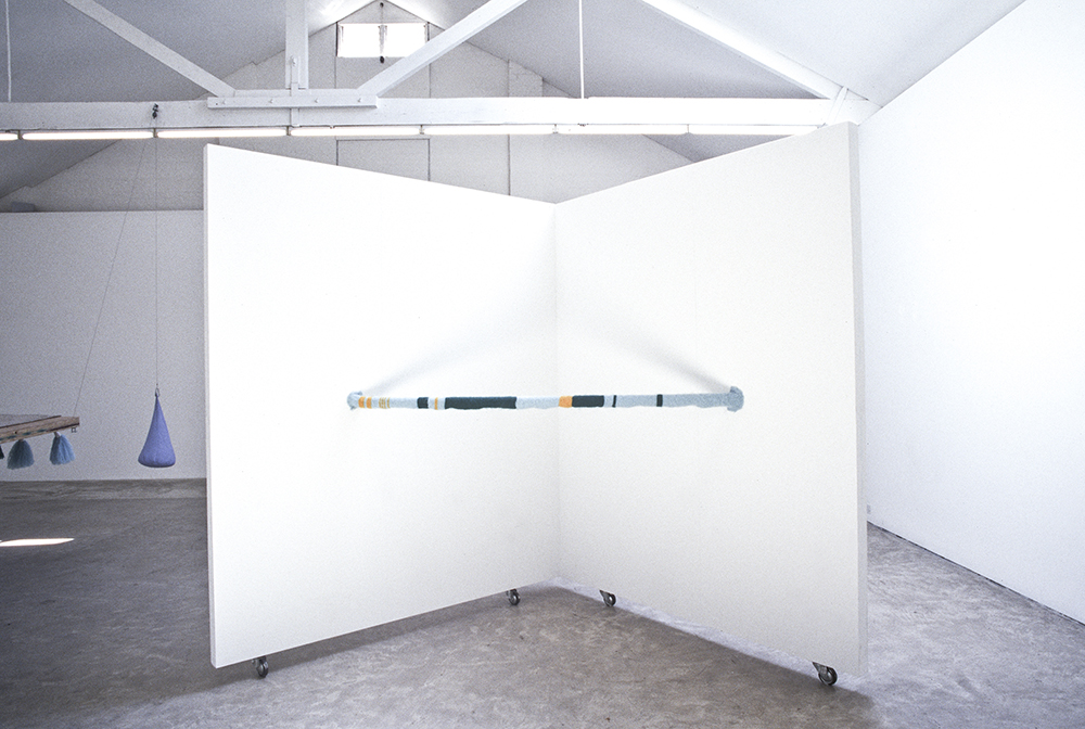 Mikala Dwyer, Recent Old Work, 1996, Sarah Cottier Gallery, Sydney