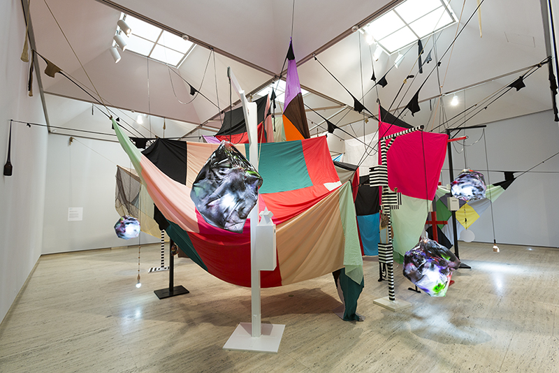 Mikala Dwyer – A shape of thought, 2017, Art Gallery of New South Wales, Sydney