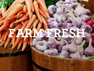 content farm.jpg