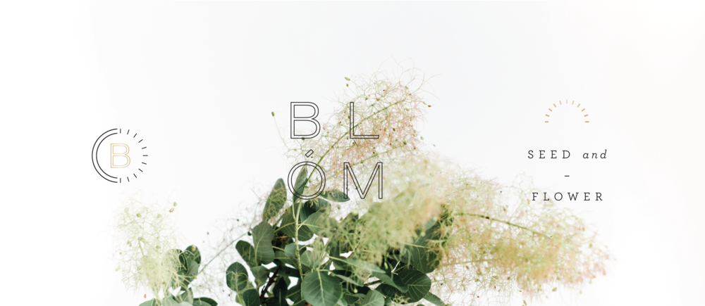 blombrand-02.png