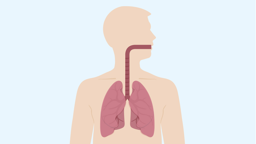 Asthma_V01_120514-05.jpg