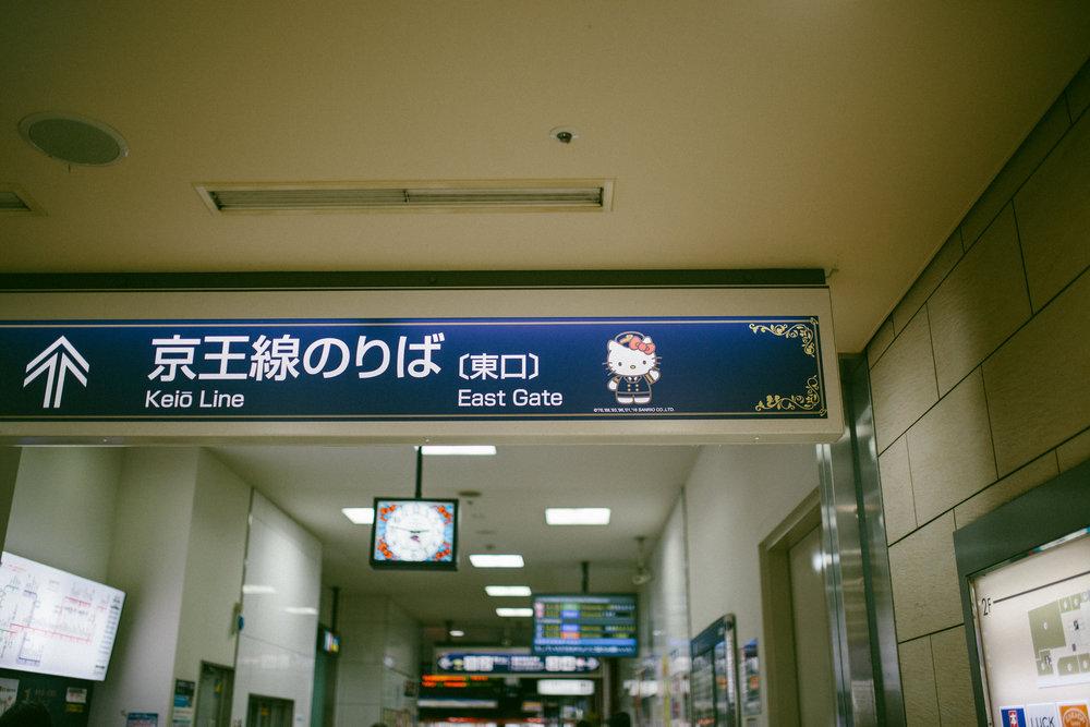 IMG_0213.jpg